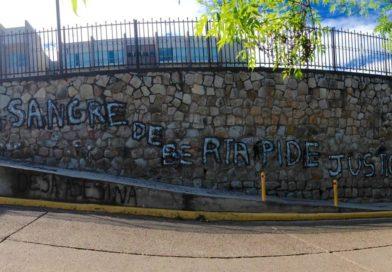 RED EU-LAT: Diputados del Parlamento Europeo muestran preocupación ante el juicio por el asesinato Berta Cáceres