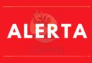 """ALERTA: POLICÍA NACIONAL, MILITARES Y TIGRES DESTRUYEN SIEMBRA DE CAFÉ Y PLÁTANO A LA COMUNIDAD """"EL MIRADOR"""", SIGUATEPEQUE"""