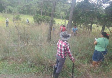 Comunidad de La Jarcia realiza medición de terreno para obtención de título comunitario.
