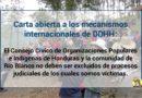 Carta abierta a los mecanismos internacionales de DDHH: