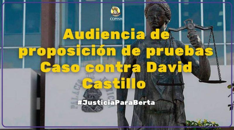 11 Enero 2021- Audiencia de Proposición de Pruebas Contra David Castillo