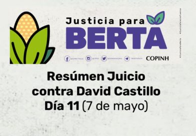 Juicio contra David Castillo: Día 11