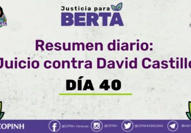Juicio contra David Castillo: Día 40