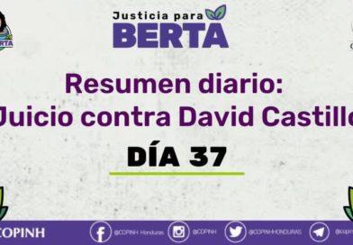 Juicio contra David Castillo: Día 37
